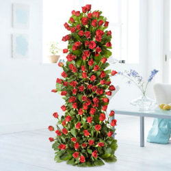 100 Red Roses tall arrangement