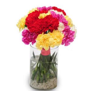 Sweet Carnations