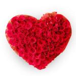 the-precious-heart