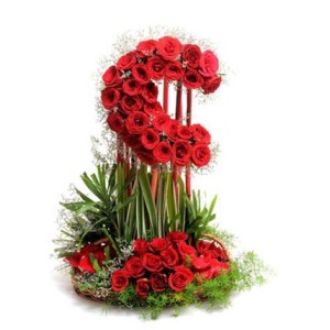 moon shaped arrangement of 50 red roses
