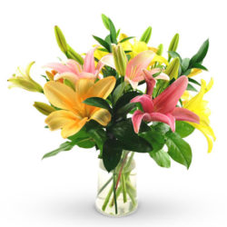 4 mix color Asiatic lilies in a glass vase