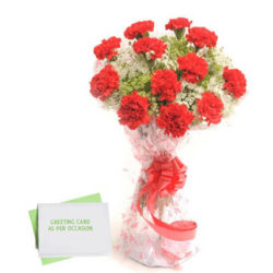 Carnations N Greeting Card